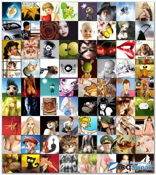 аватарки для квипа 64х64: