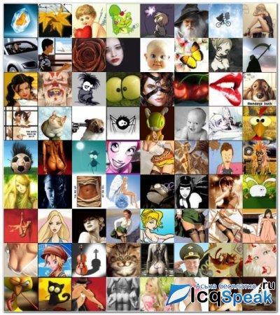 Аватарки для qip, бесплатные фото, обои ...: pictures11.ru/avatarki-dlya-qip.html